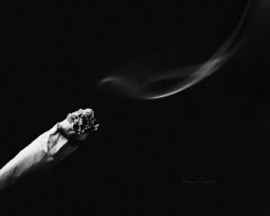 الأديب المدخن
